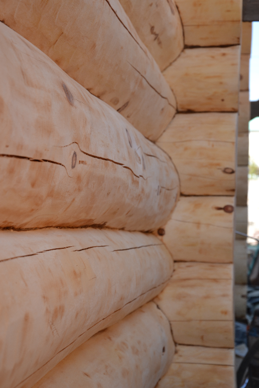 Срубовые дома из бревна