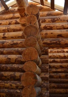 Рубленные дома из кедра и лиственницы
